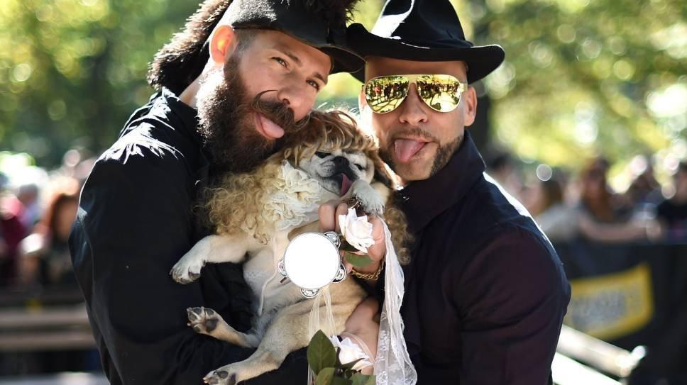 Владельцы позируют со своей собакой