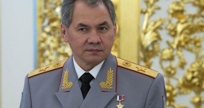 Министр обороны РФ Сергей Шойгу во время приема в Кремле, архивное фото
