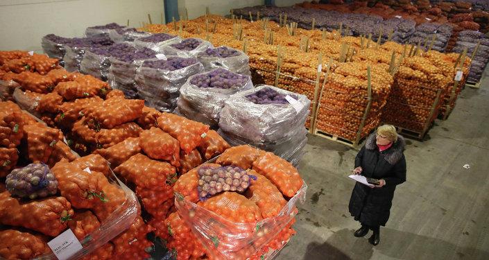 Овощной склад, архивное фото