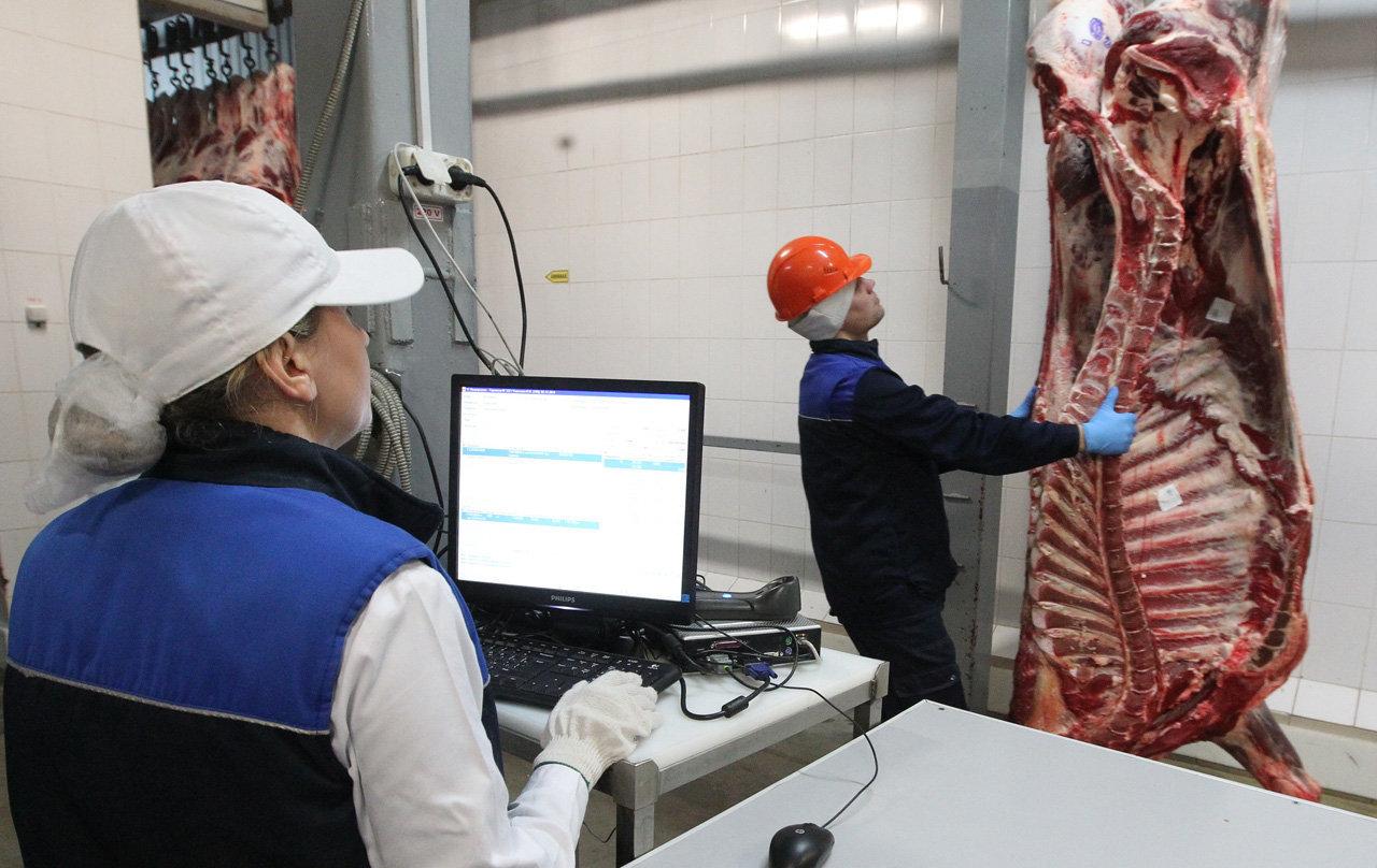 Брестский комбинат, мясо-жировой цех
