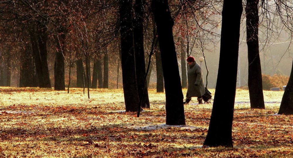 Пенсионерка в парке