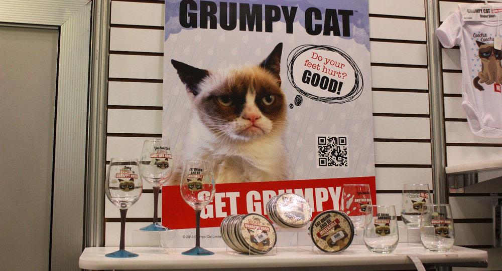 Сувенирная лавка Сердитого кота