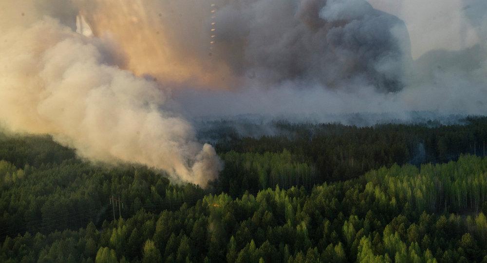Пажар у зоне адчужэння ЧАЭС