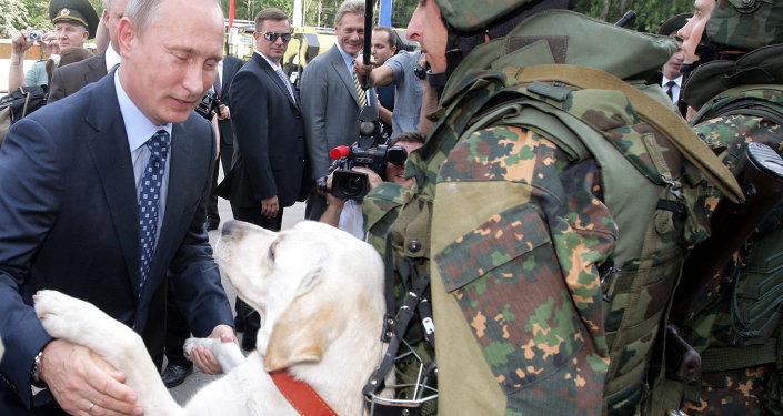 Владимир Путин во время посещения Отдельной дивизии оперативного назначения внутренних войск МВД России в подмосковной Балашихе
