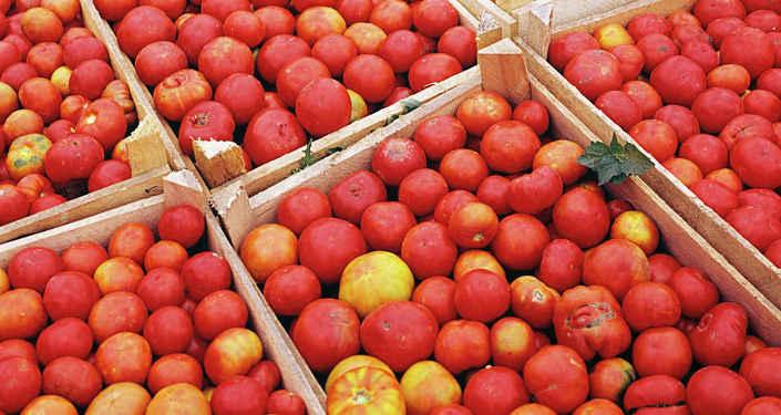 Впервом квартале экспорт томатов изТурции вырос на54%