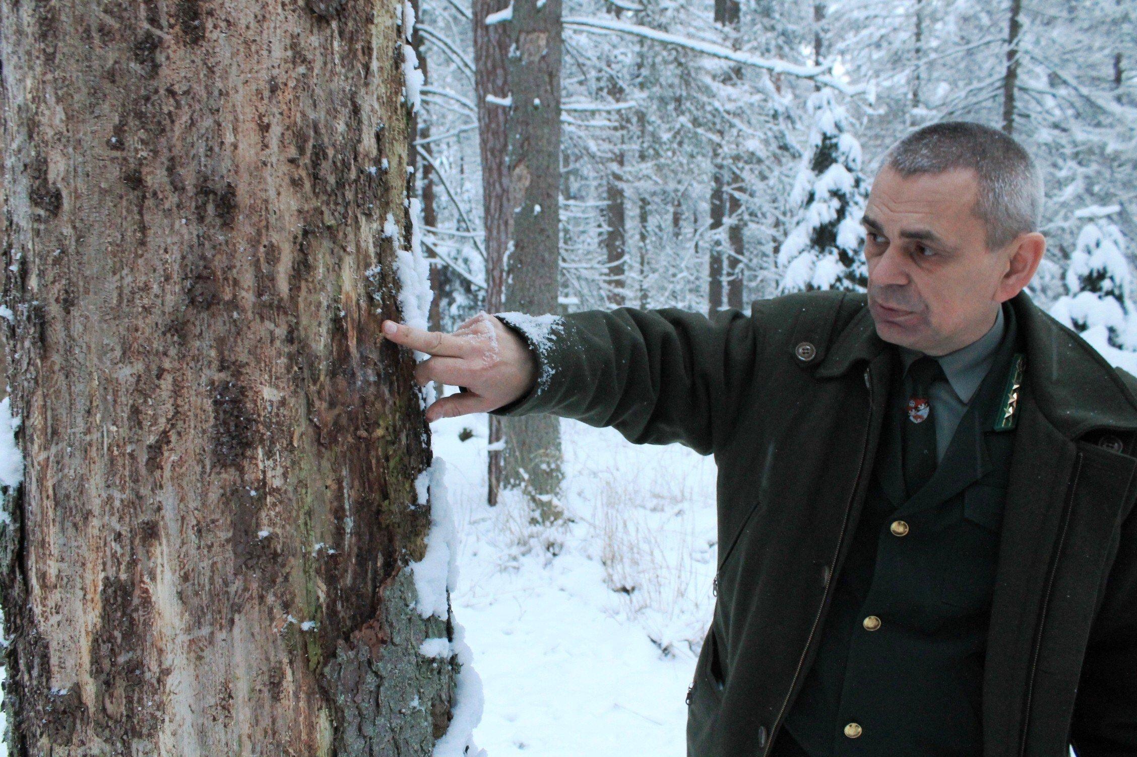 Василий Филимонов в пуще.
