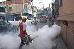 СПУТНИК_Окуривание дымом домов в Каракасе из-за вируса Зика и комментарий эксперта ВОЗ