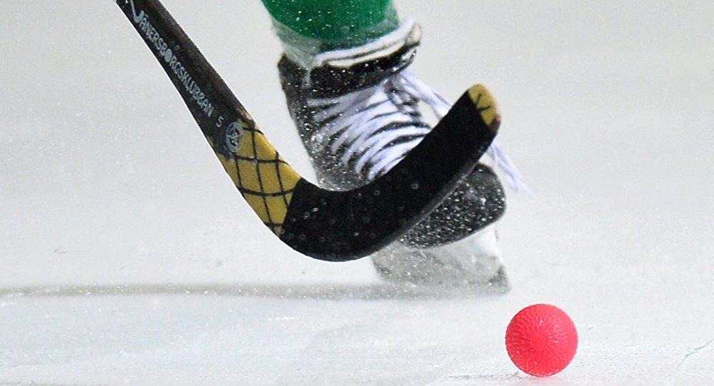 Хоккей с мячом. Чемпионат мира. Матч Беларусь - Норвегия