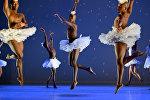 Генеральная репетиция балета Лебединое озеро