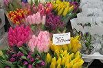 Цены на тюльпаны на 8 Марта