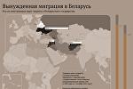 Инфографика: Вынужденная миграция в Беларусь