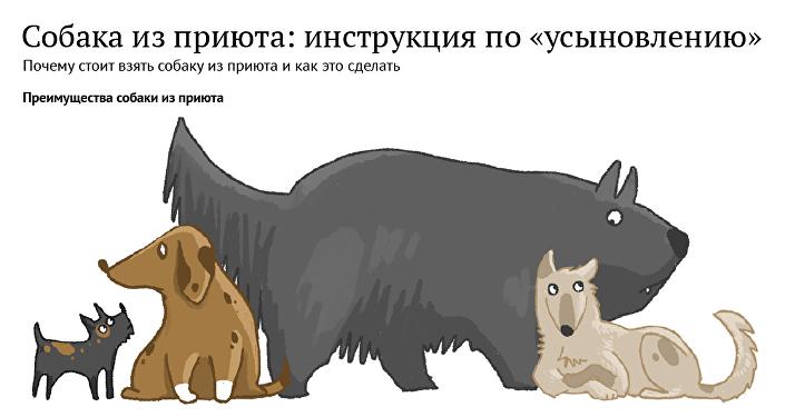 Собака из приюта: инструкция по «усыновлению»