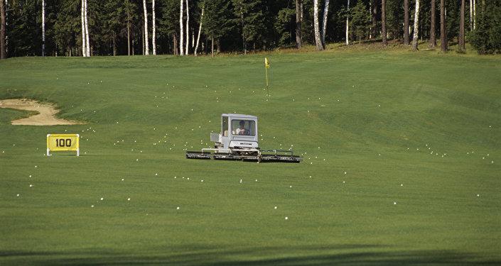 Профессиональное поле для гольфа