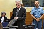 Радован Караджич в зале суда в Гааге,11 июля 2013
