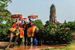 Туристы на слонах в Таиланде