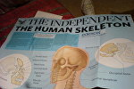Один из номеров издания Independent