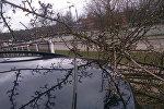 Дерево, упавшее на автомобиль из-за сильного ветра