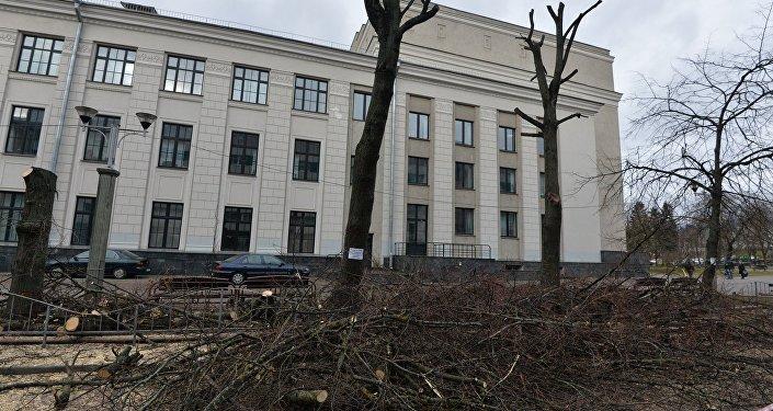 Обрезка деревьев на бульваре Мулявина