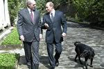Президенты России и Беларуси Владимир Путин и Александр Лукашенко во время встречи (справа налево)