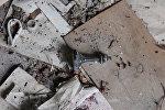 Шахматные фигурки и брошенные тетради: что осталось в деревне-призраке
