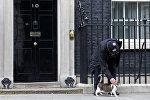 Сотрудник полиции гладит кота премьер-министра Великобритании Дэвида Кэмерона на Даунинг-стрит в Лондоне