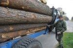 Дозиметрический контроль древесины