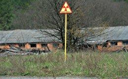 Беларускі сектар зоны адчужэння Чарнобыльскай АЭС