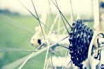 Колесо велосипеда. Архивное фото