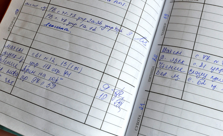 Дневник Вероники
