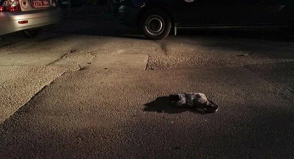 Ситроен сбил натротуаре 2-х девушек вМинске, одна погибла