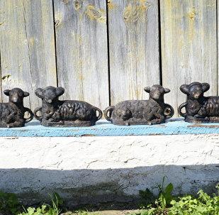 Формы пад вясельных баранаў