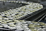 Производство рыбных консервов, архивное фото