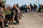 Мигранты пересекают сербско-венгерскую границу