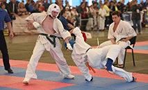 Международный турнир по эншин-каратэ Майский вызов