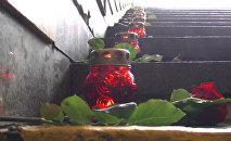 Розы на ступенях: годовщина трагедии на Немиге