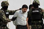 Мексиканский наркобарон Хоакин Гусман Лоэра по прозвищу Эль Чапо (Коротышка)
