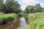 Река Ствига - место гибели подростков в Лельчицком районе