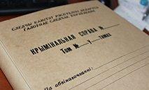 Папка для материалов уголовного дела
