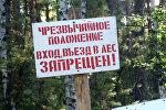 Введен режим запрета на посещение лесов