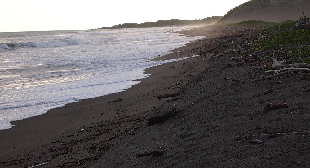 Пляж на Фиджи архивное
