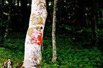 Предупреждающий знак в Боснии - впереди минное поле