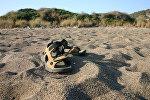Обувь на берегу
