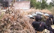 Росгвардия и ВДВ: террористы уничтожены, беспорядки подавлены