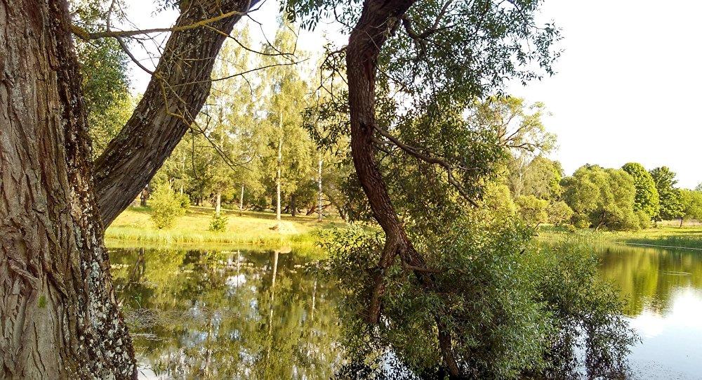 Река, архивное фото