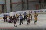 Массовая драка по время хоккейного матча между детскими клубами Спарта и Гележинис Вилкас
