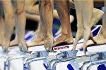 Предварительный заплыв на 100 метров баттерфляем