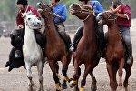 Открытый чемпионат Киргизии по кок-бору