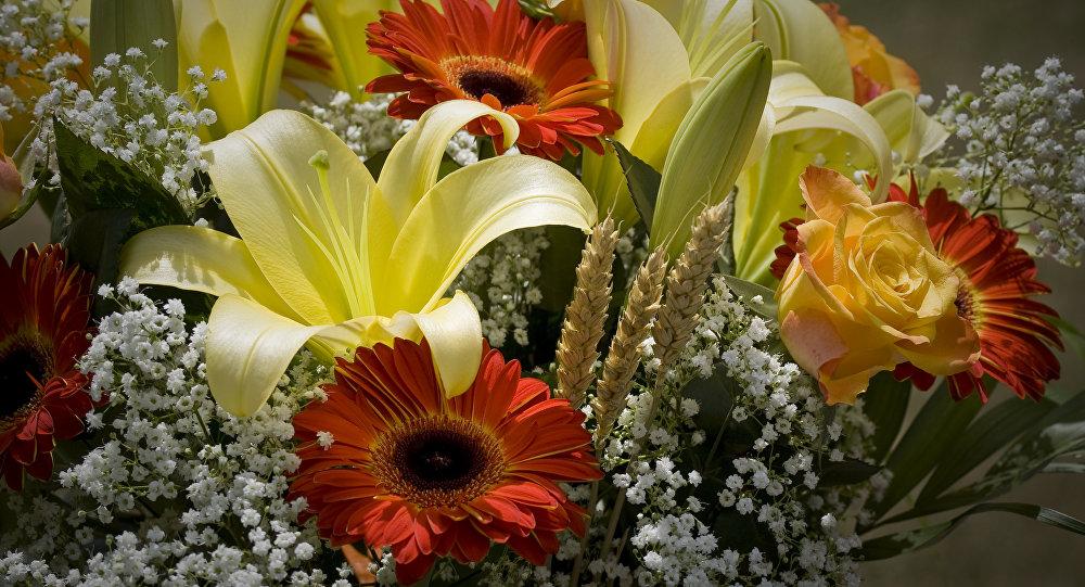 ВБодруме российских туристов встретили сцветами