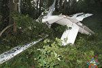 Самолет, упавший возле Браслав