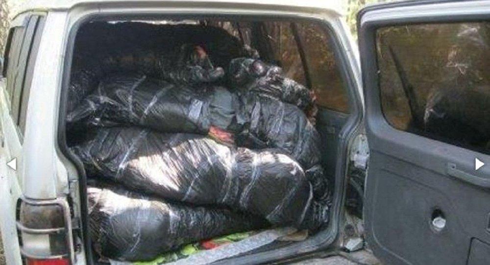 Брестские таможенники открыли огонь, чтобы остановить контрабандистов